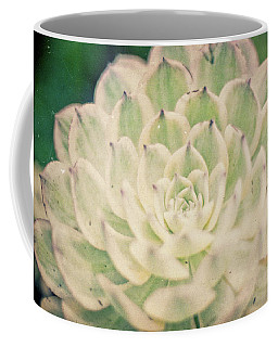 Coffee Mug featuring the photograph Natural Geometry by Ana V Ramirez