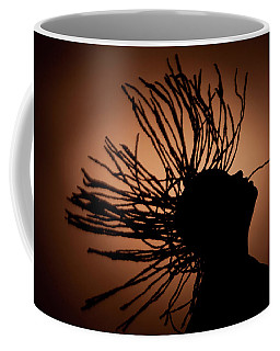 Natural Locks In Flight Coffee Mug