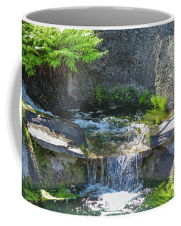 Coffee Mug featuring the photograph Natural Spa Zone by Raphael Lopez