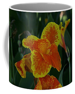 Natural Splash Of Color Coffee Mug by John Glass