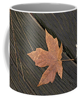 Natural Still Life - 365-356 Coffee Mug by Inge Riis McDonald