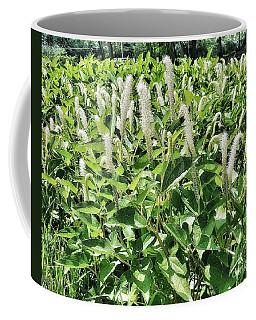Natural Vision Coffee Mug