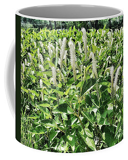 Natural Vision Coffee Mug
