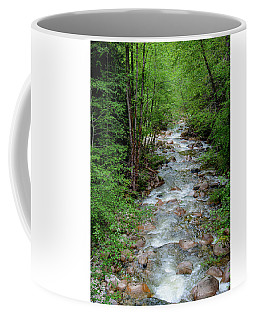Naturally Pure Stream Backroad Discovery Coffee Mug