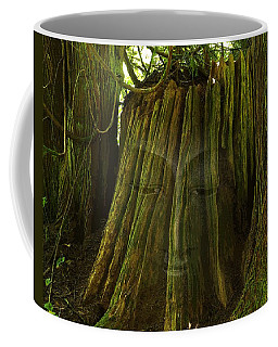 Nature Buddha Coffee Mug by I'ina Van Lawick