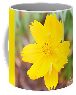 Coffee Mug featuring the photograph Nature Colorful Flower Gifts - Yellow by Ray Shrewsberry