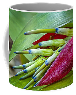 Nature In Bloom Coffee Mug