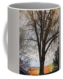Coffee Mug featuring the photograph Nature Saying I Love You by Marie Neder