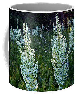 Nature Speaks Coffee Mug by Sean Sarsfield