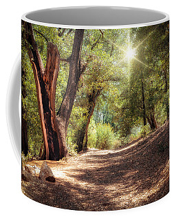 Coffee Mug featuring the photograph Nature Trail by Alison Frank