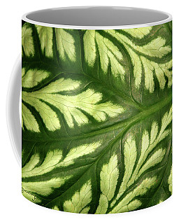 Coffee Mug featuring the photograph Nature's Design by Mariarosa Rockefeller