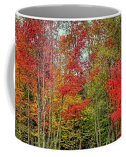 Coffee Mug featuring the photograph Natures Fall Palette by David Patterson