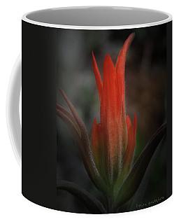 Nature's Fire Coffee Mug