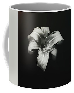 Natures Fireworks Coffee Mug