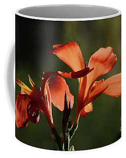 Coffee Mug featuring the photograph Nature's Glory by Cindy Manero
