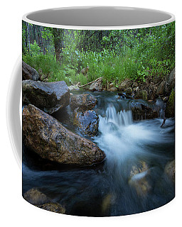 Nature's Harmony Coffee Mug by Sue Cullumber
