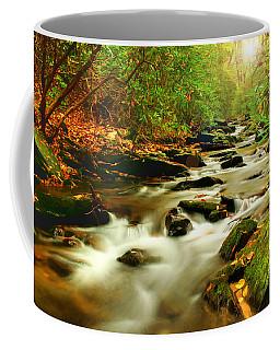 Natures Journey Coffee Mug by Darren Fisher