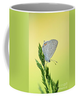 Nature's Little Wonder Coffee Mug by Debbie Green