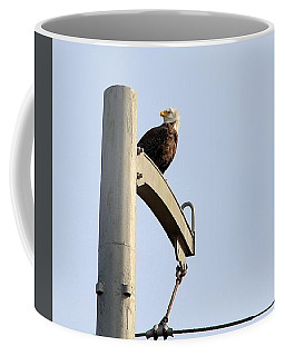 Nature's Philadelphia Eagle Coffee Mug