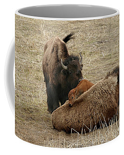 Coffee Mug featuring the photograph Nature's Pillow Top by Ronnie and Frances Howard