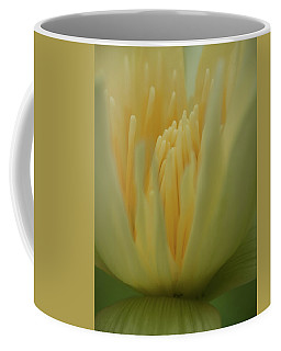 Natures Reflection Coffee Mug