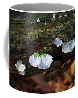 Coffee Mug featuring the photograph Natures Ruffles - Cascade Wi by Mary Machare