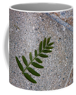 Nature's Trace Coffee Mug