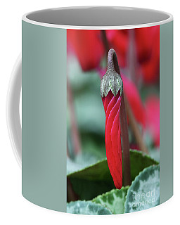 Natures Umbrella Coffee Mug