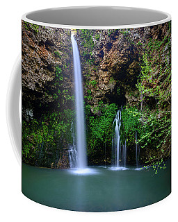 Nature's World Coffee Mug