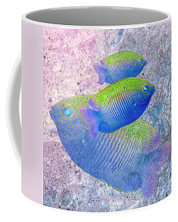Coffee Mug featuring the photograph Nautical Beach And Fish #3 by Debra and Dave Vanderlaan