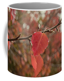 Coffee Mug featuring the photograph Nearing The End by Elaine Teague