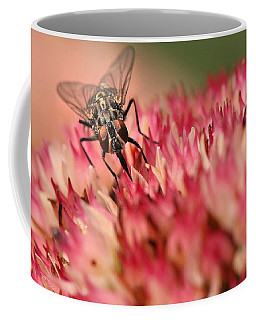 Nectar Hunt Coffee Mug