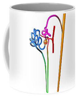 Coffee Mug featuring the digital art Nephron White by Russell Kightley