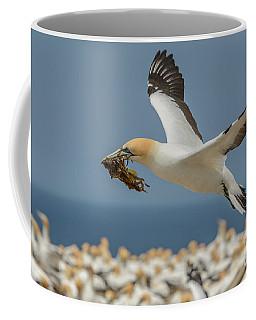 Nest Building Coffee Mug