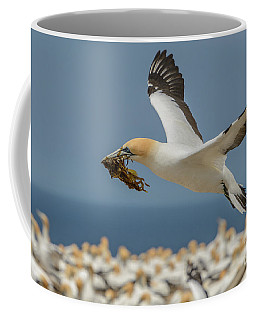 Coffee Mug featuring the photograph Nest Building by Werner Padarin