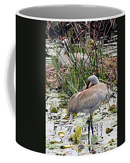 Nesting Sandhill Crane Pair Coffee Mug