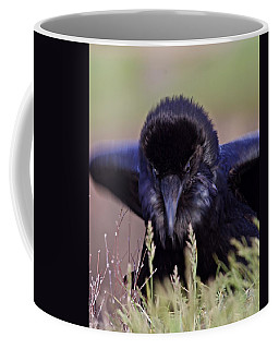 Nevermore Coffee Mug by Todd Kreuter