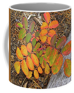 New And Old Life Cycles Coffee Mug