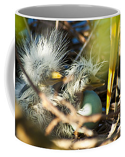 Coffee Mug featuring the photograph New Arrivals by Carolyn Marshall