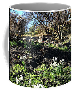New Growth From Sandra Rosa Fires Coffee Mug