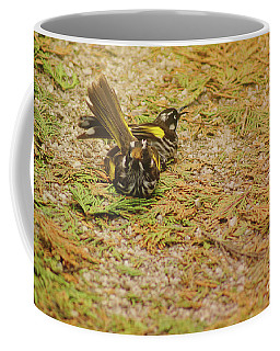 Coffee Mug featuring the photograph New Holland Honeyeaters by Cassandra Buckley