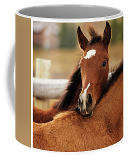 Coffee Mug featuring the photograph New Life by Sharon Jones