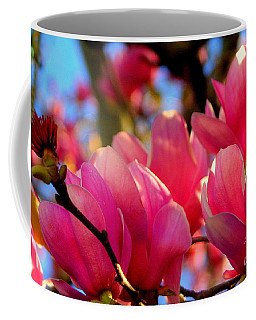 New Orleans In The Dead Of Winter Spring Japanese Magnolias Coffee Mug by Michael Hoard