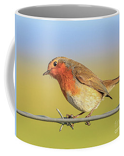 Coffee Mug featuring the photograph New Year Robin by Roy McPeak