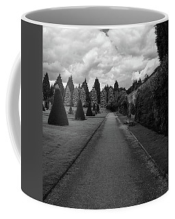 Coffee Mug featuring the photograph Newstead Abbey Country Garden Gravel Path by Scott Lyons
