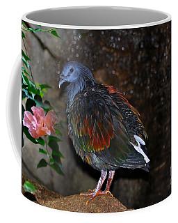 Nicobar Pigeon 2 Coffee Mug by Elaine Manley