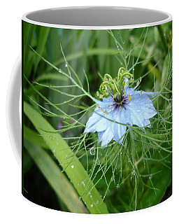 Nigella In Spring Rain Coffee Mug