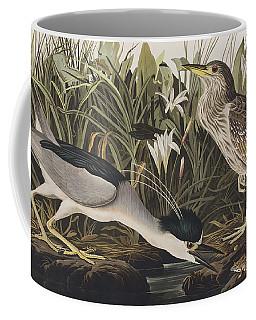 Night Heron Or Qua Bird Coffee Mug