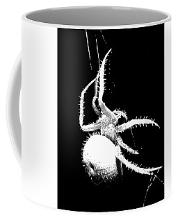 Coffee Mug featuring the photograph Night Spider by Scott Cordell