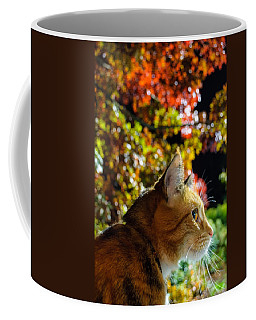 Coffee Mug featuring the photograph Night Stalker by Tikvah's Hope